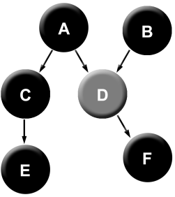 Complex cause obs D